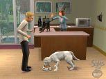 Die Sims 2: Haustiere  Archiv - Screenshots - Bild 22