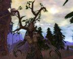 Warhammer Online: Age of Reckoning Archiv #1 - Screenshots - Bild 30