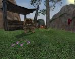 EverQuest 2: Echoes of Faydwer  Archiv - Screenshots - Bild 18