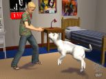Die Sims 2: Haustiere  Archiv - Screenshots - Bild 19