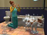 Die Sims 2: Haustiere  Archiv - Screenshots - Bild 11