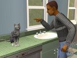 Die Sims 2: Haustiere  Archiv - Screenshots - Bild 8