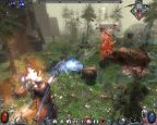 Dawn of Magic  Archiv - Screenshots - Bild 47