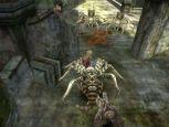 Sword of the New World  Archiv - Screenshots - Bild 4