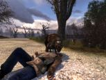 S.T.A.L.K.E.R. Shadow of Chernobyl  Archiv - Screenshots - Bild 40