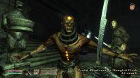 Elder Scrolls 4: Shivering Isles  Archiv - Screenshots - Bild 11