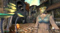 Elder Scrolls 4: Shivering Isles  Archiv - Screenshots - Bild 16