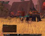 Vanguard: Saga of Heroes  Archiv - Screenshots - Bild 3