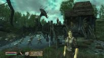 Elder Scrolls 4: Shivering Isles  Archiv - Screenshots - Bild 14