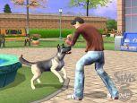 Die Sims 2: Haustiere  - Screenshots - Bild 3