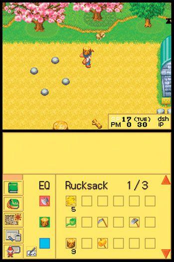 Harvest Moon DS (DS)  Archiv - Screenshots - Bild 2