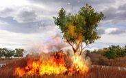 Far Cry 2  Archiv - Screenshots - Bild 10