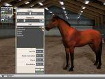 Pferderennsport Manager  Archiv - Screenshots - Bild 5