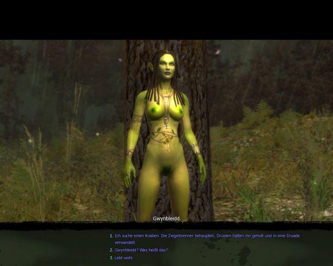 Witcher  Archiv - Screenshots - Bild 5