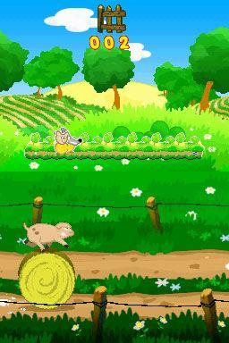 Crazy Pig (DS)  Archiv - Screenshots - Bild 4