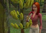 Die Sims Inselgeschichten - Screenshots - Bild 15