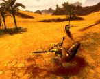 Age of Conan: Hyborian Adventures - Screenshots - Bild 2