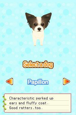 Petz - Fashion Dogs - Screenshots - Bild 2