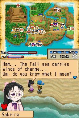 Harvest Moon: Island of Happiness - Screenshots - Bild 6