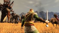 Lord of the Rings: Conquest - Screenshots - Bild 8