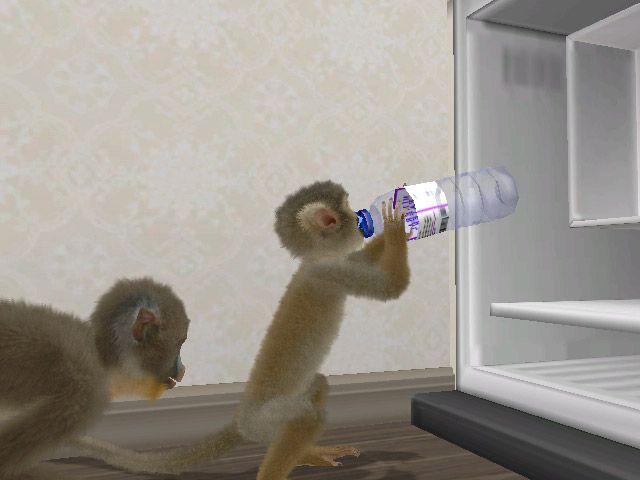 Monkey Madness Wii - Screenshots - Bild 5