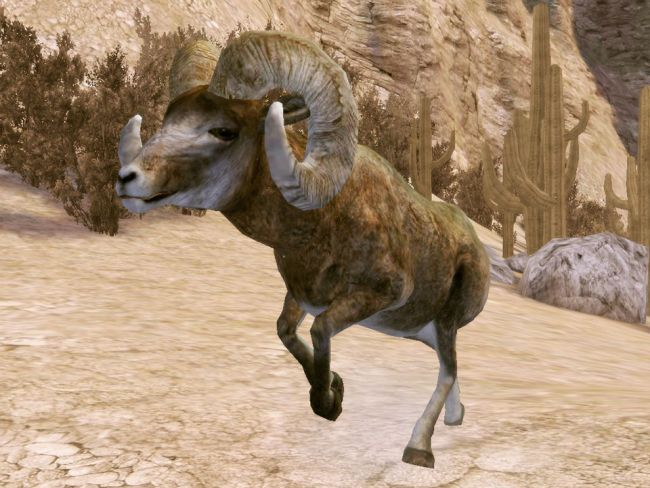 Cabela's Legendary Adventures - Screenshots - Bild 3