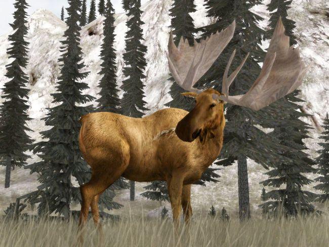 Cabela's Legendary Adventures - Screenshots - Bild 7