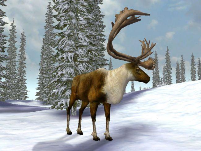Cabela's Legendary Adventures - Screenshots - Bild 2