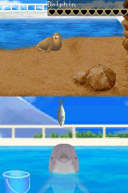 Mein Freund, der Delphin - Screenshots - Bild 3