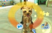 Petz Sports: Wilder Hunde-Spaß - Screenshots - Bild 6