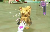 Petz Sports: Wilder Hunde-Spaß - Screenshots - Bild 5