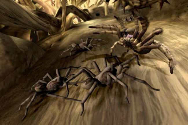Deadly Creatures - Screenshots - Bild 6