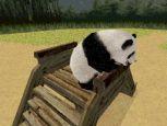 Petz: Mein süßer Panda - Screenshots - Bild 3