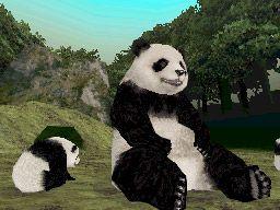 Petz: Mein süßer Panda - Screenshots - Bild 4