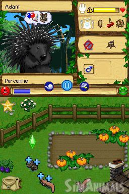 SimAnimals - Screenshots - Bild 6