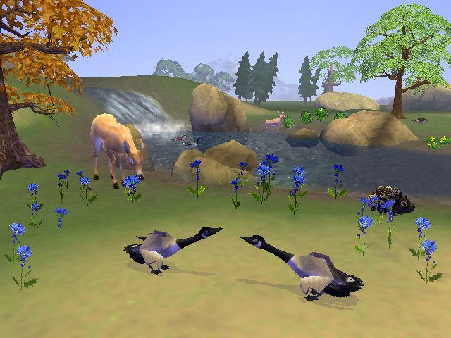 SimAnimals - Screenshots - Bild 13