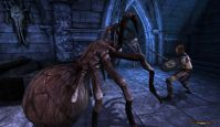 Dragon Age: Origins - Screenshots - Bild 21