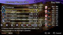 Crimson Gem Saga - Screenshots - Bild 3