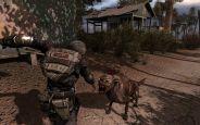 S.T.A.L.K.E.R.: Call of Pripyat - Screenshots - Bild 3