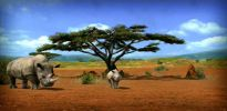 Afrika - Screenshots - Bild 2