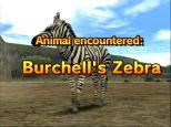 Animal Kingdom: Wildlife Expedition - Screenshots - Bild 3