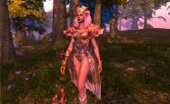 Heroes of Telara - Screenshots - Bild 7