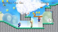 New Super Mario Bros. Wii - Screenshots - Bild 4