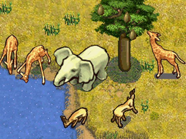 SimAnimals Afrika - Screenshots - Bild 3