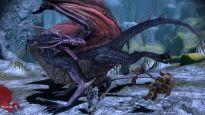 Dragon Age: Origins - Screenshots - Bild 6