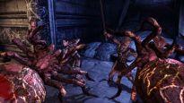 Dragon Age: Origins - Screenshots - Bild 38