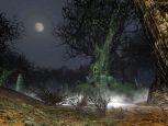 Der Herr der Ringe Online: Die Belagerung des Düsterwalds - Screenshots - Bild 24