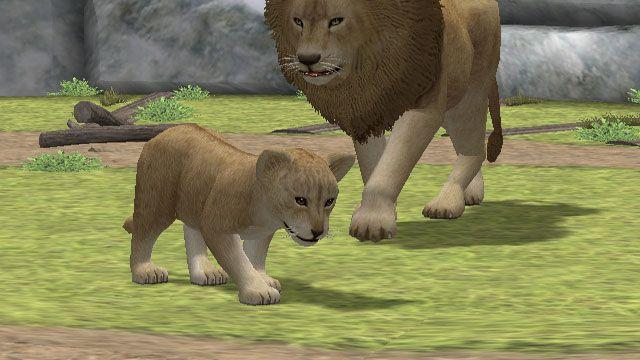 My Zoo - Screenshots - Bild 8