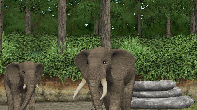 My Zoo - Screenshots - Bild 9