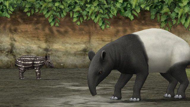 My Zoo - Screenshots - Bild 2